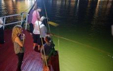 Squid Fishing on Flamingo Cruise
