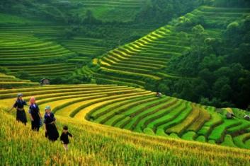 sapa journeyvietnam