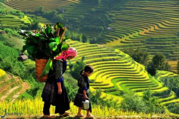 How To Discover Sapa Vietnam - Journey Vietnam