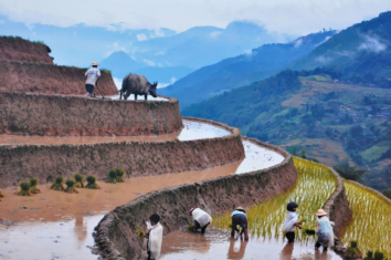 Sapa Journey Vietnam