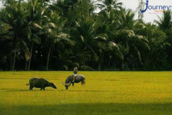 Vietnam – You Probly Already Know - Journey Vietnam