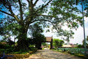 Duong Lam Village – A Small Hanoi In The Heart - Journey Vietnam