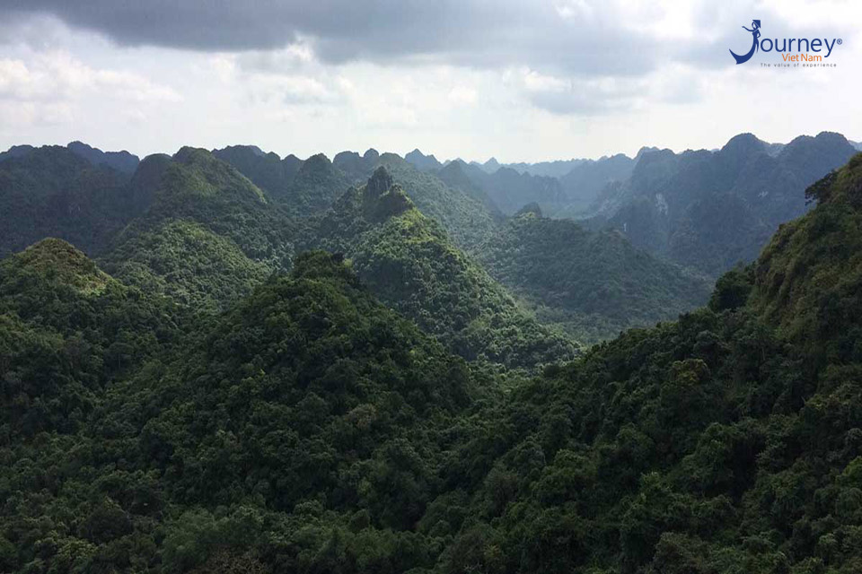 Some Beautiful National Parks In Vietnam You May Want To Come - Journey Vietnam