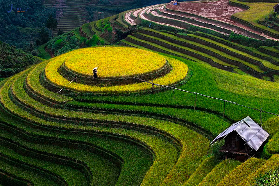 The Unmistakable Beauty Of The Mu Cang Chai - Journey Vietnam