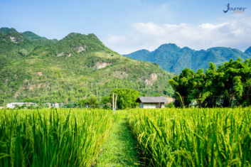 Mai Chau Tour - The Most Popular Tours In Viet Nam - Journey Vietnam