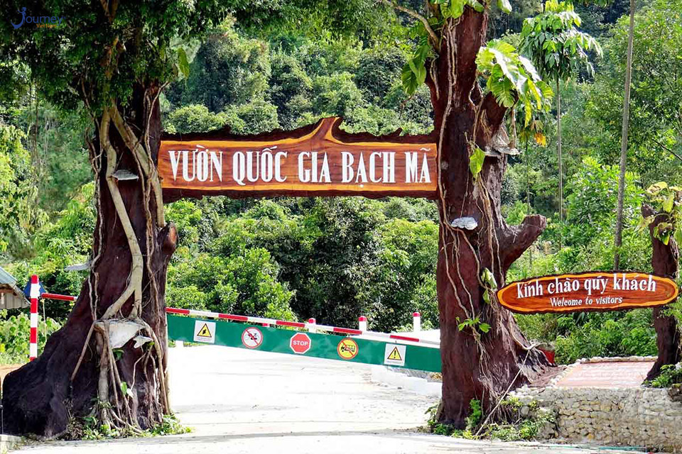 Bach Ma National Park - Journey Vietnam