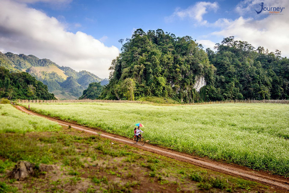 Moc Chau - Journey Vietnam