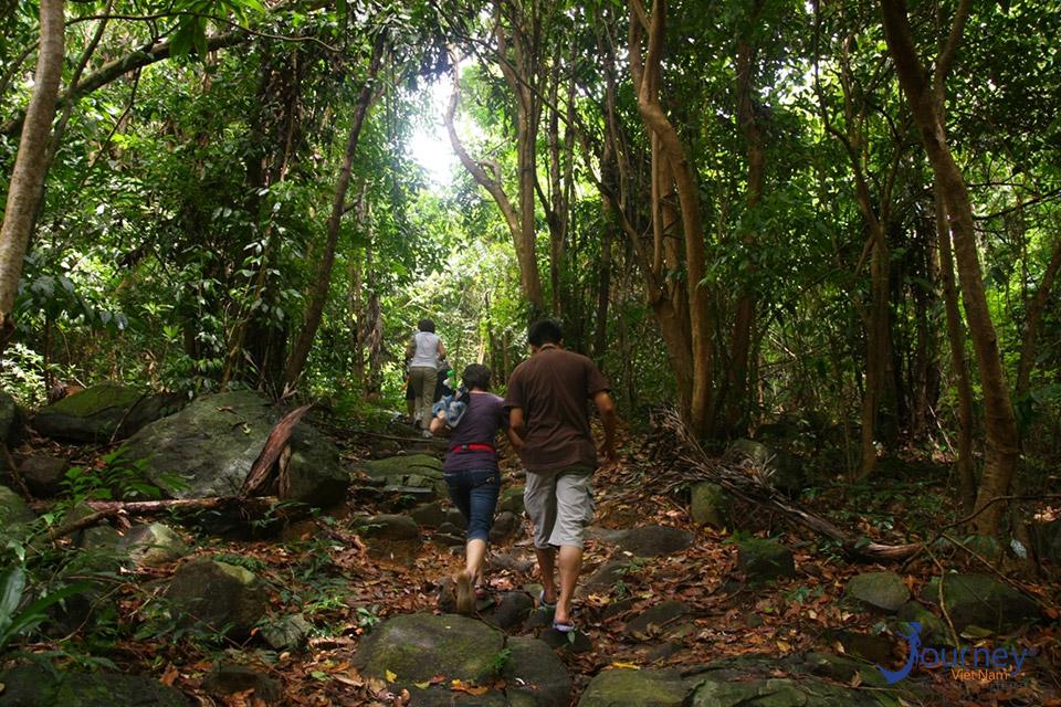 Binh Chau Forest - Journey Vietnam