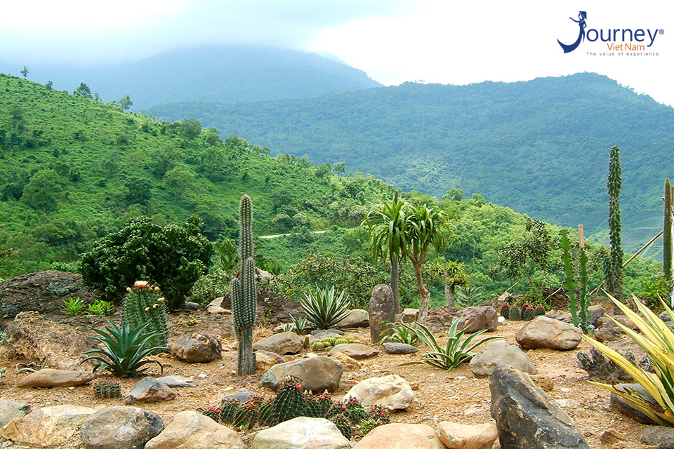 Ba Vi National Park - The Tourist Destination Dedicated To The Adventurous