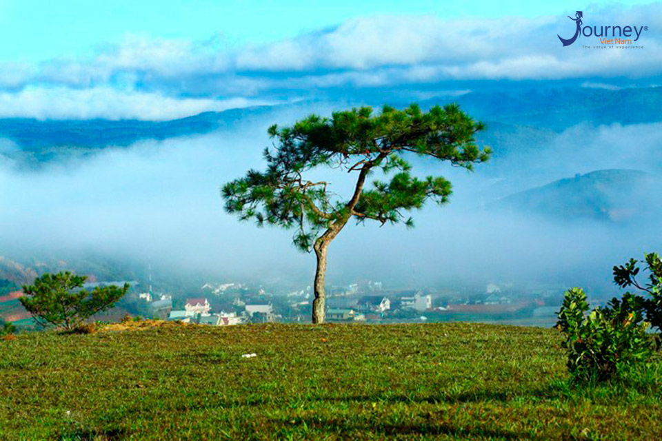 Thien Phuc Duc Hill - Dalat's Paradisiac Scene
