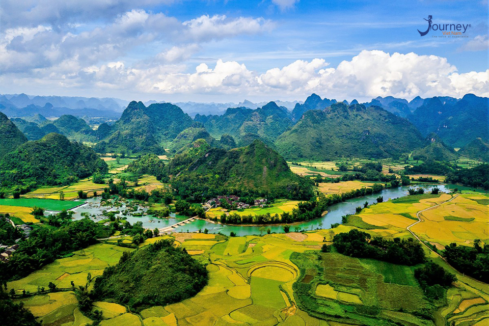 Spring Cao Bang And Golden Leaves In The Autumn